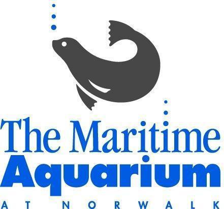 New Year 39 S Eve At The Maritime Aquarium Norwalk Ct
