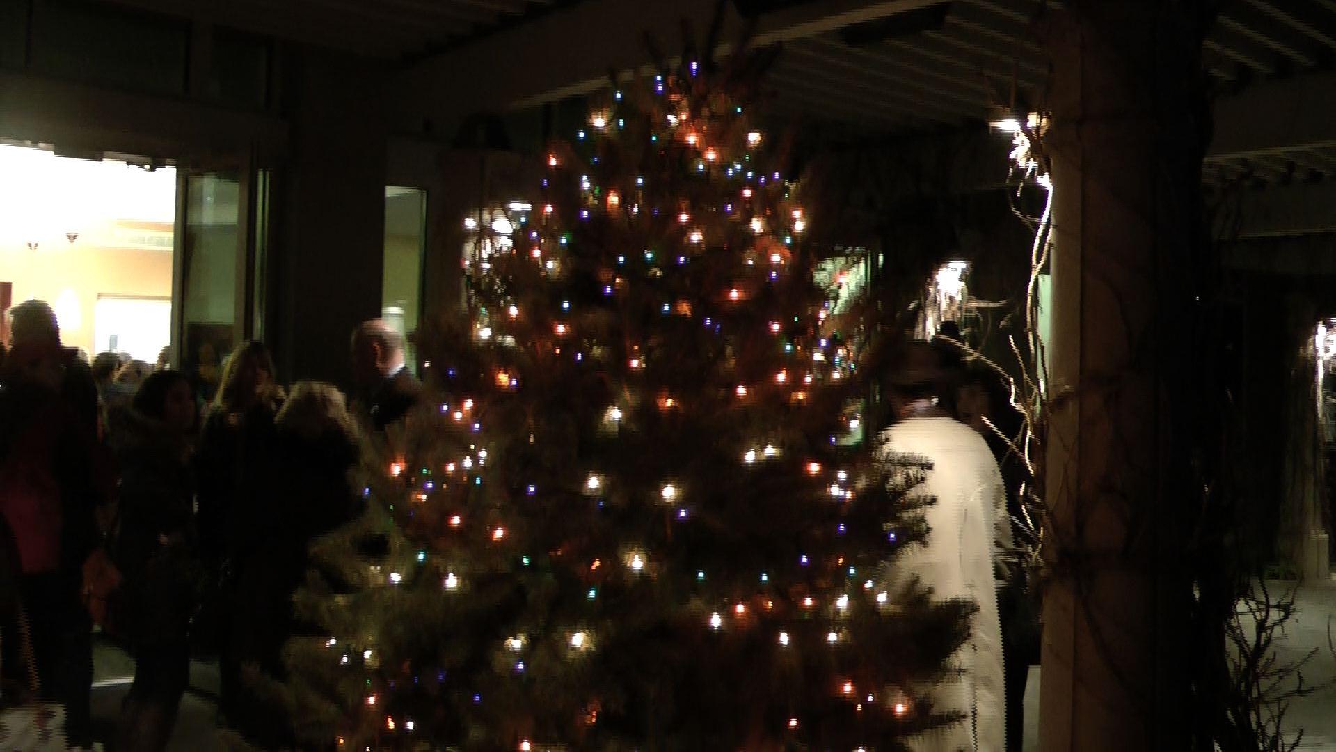 Christmas Tree Recycling Greenwich : Greenwich christmas tree recycling during januray
