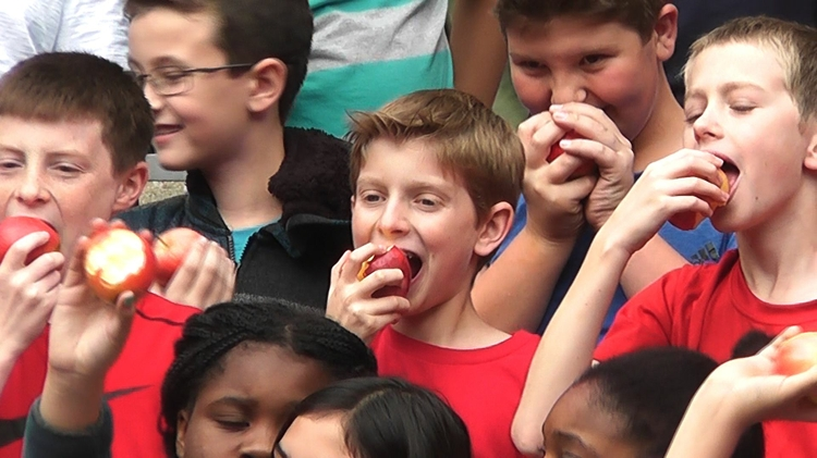 Three Hundred Students Take Part in Apple Crunch