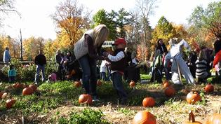 Harvest Festival Returns to Nature Center